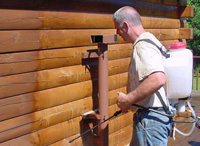 Log Home Maintenance Issues