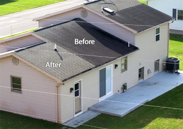 Residential Roof Cleaning Log Building Maintenance And