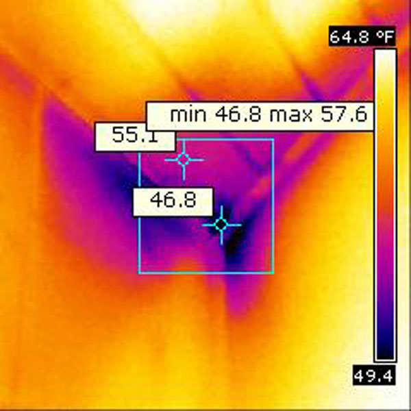 Log Home Thermography Services